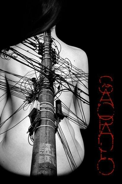 Edição 2010 - Luís Fernandes