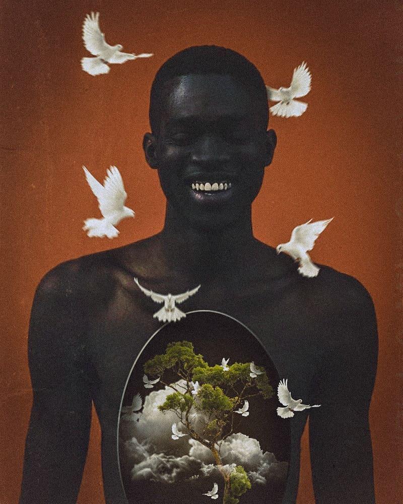 """Transborde paz"", colagem por Tavaro (@tavaro)   Fotografia: Jonathan Wolpert (@jonathanwolpert)."