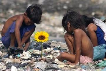 ilha-e1557067430429