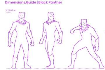 Dimensions-Guide-Pop-Culture-Black-Panther